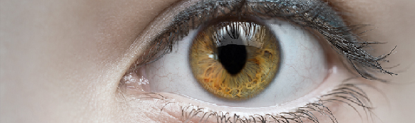 05-11-olho+gatoBLOG